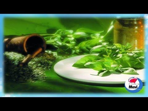 Para que sirve la albahaca - Beneficios y propiedades de la albahaca