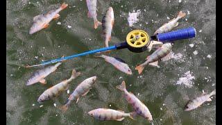 Зимняя рыбалка 2021 Глухозимье в феврале Ловля мелкого окуня с одной лунки