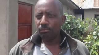 DAIRY FARMING: Improve quality milk production