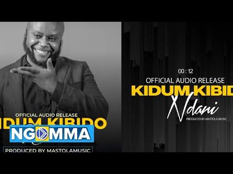 Download KIDUM - NDANI (Official Music Audio)