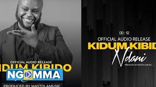 KIDUM - NDANI (Official Music Audio)