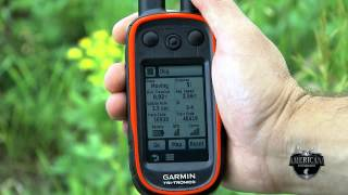 Garmin Alpha Track And Train Your Dogs