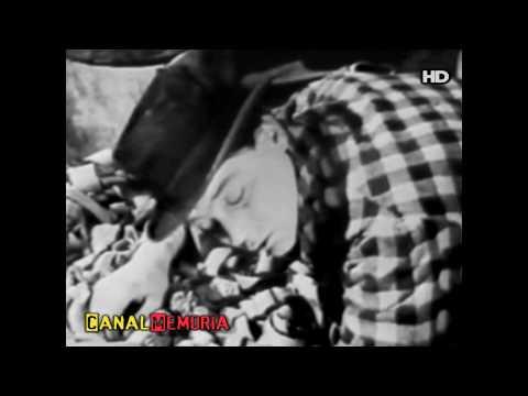 Trailer do filme Acabaram-se os Otários