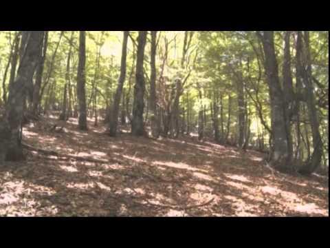 Asturias: Natural Riches