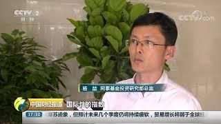 [中国财经报道]MSCI第二次扩容倒计时 A股权重由10%升至15%| CCTV财经