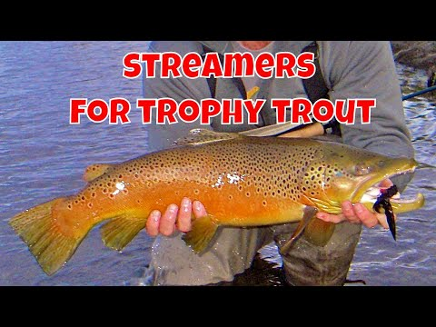 Streamers for Trophy Trout   How to Use Streamers