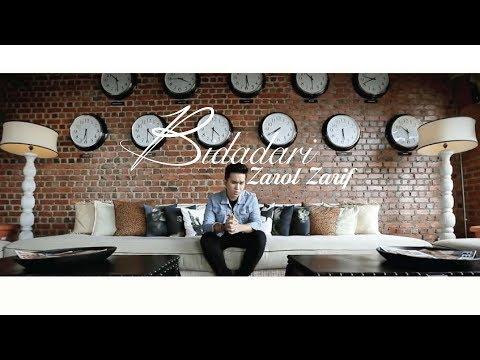 Zarol Zarif - Bidadari (Official Music Video)
