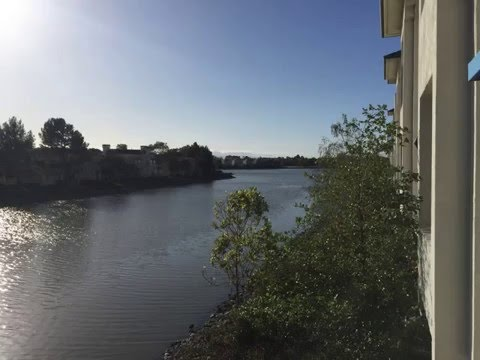 716 Baltic Circle for Rent - Redwood Shores  - RENTED!