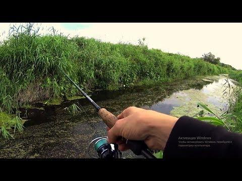 Рыбалка на спиннинг - На рыбалке!