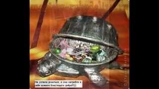Черепаха-шкатулка, своими руками!