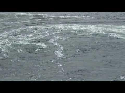 2/21 Skookumchuck Narrows Ebb Tide