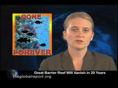 Great Barrier Reef Will Vanish in 20 Years