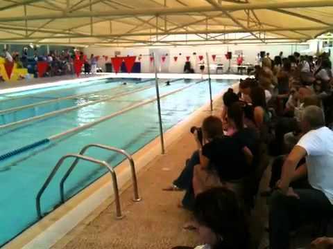 Finlay Wins At Dubai British School Swimming Gala Youtube