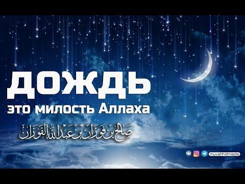 Дождь - это милость Аллаха | Шейх Салих аль-Фаузан ᴴᴰ