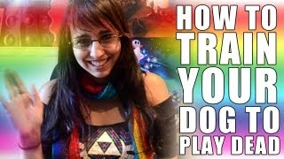 How To Train Your Dog To Play Dead!