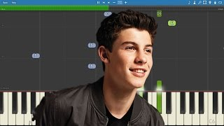 Shawn Mendes - Don