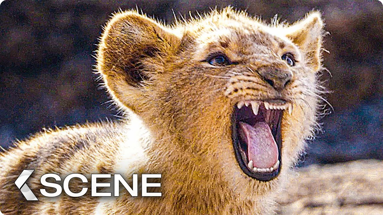 lion king battle cry # 46