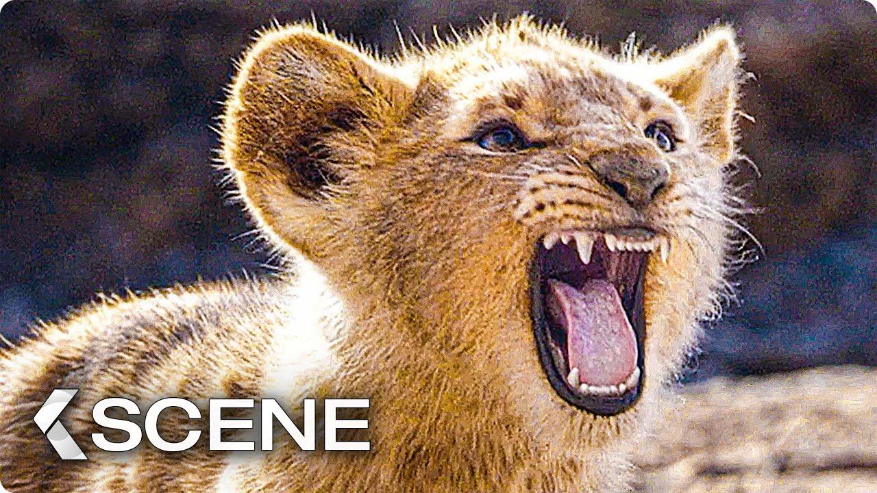 Watch when lions roared online dating