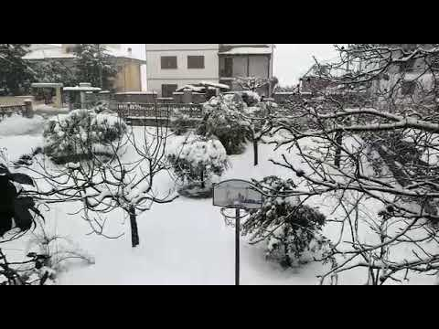 Nevicata Sant'Omero Gen2017