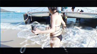BEAUZ & Ameria - Firefly [Hawaii Travel Lyric Video]