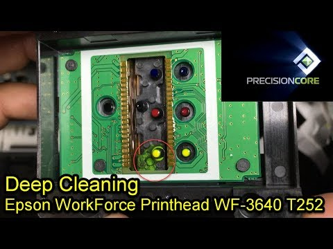Extreme Unclog Epson Printhead WorkForce WF-3640 Fix 0x97 0xEA Error