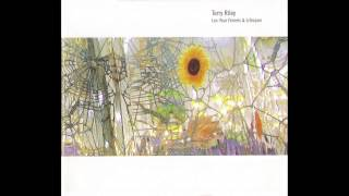 In the Summer - Terry Riley