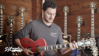 Technically Speaking: Coil Tapping Options | D'Angelico Guitars
