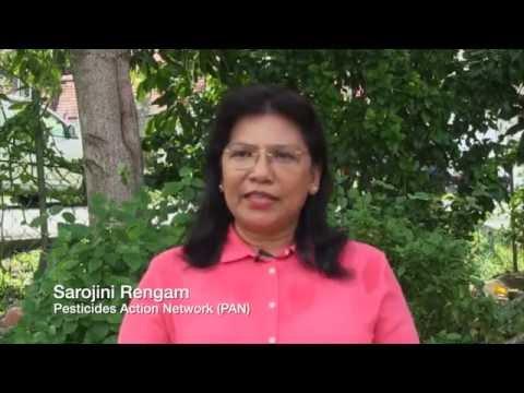 Sarojeni Rengam on the Monsanto Tribunal in The Hague