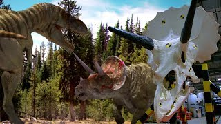 The carnivorous Tyrannosaurus Rex and the herbivorous triceratops a...
