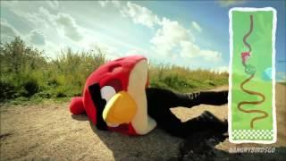 Angry Birds Go: In den Kartflitzer, fertig, los!