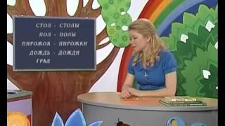 Русский язык 62. Единственное и множественное число имён существительных — Шишкина школа