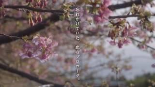 初恋クロニクル 予告 愛沢新菜 動画 23