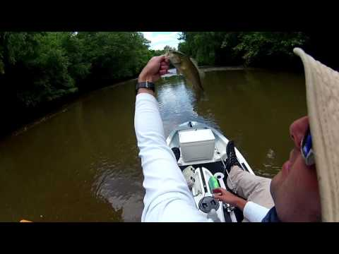 Dan river Smallmouth bass fishing