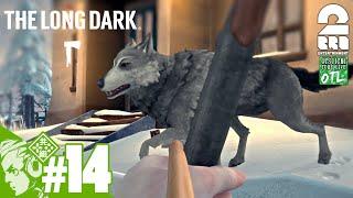 #14【サバイバル】おついちの「The Long Dark シーズン2」【EP3】 thumbnail