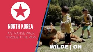 WILDE ON   NORTH KOREA   STRANGE WALK THROUGH THE PARK