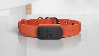 Introducing Nuzzle, The Most Reliable GPS Pet Collar
