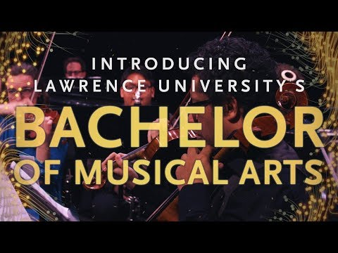 Exploring the Bachelor of Musical Arts