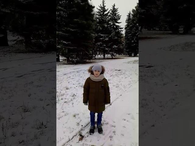 Изображение предпросмотра прочтения – ДавидЗаславский читает произведение «Поёт зима-аукает...» С.А.Есенина