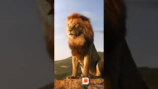 The King Of Lion tamil status