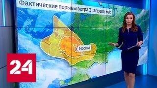 """""""Погода 24.: ветер в Москве не дорос до урагана - Россия 24"""