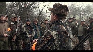 Polowanie na dziki i lisy