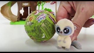 Видео для детей. Мэри и  Юху ищут шоколадные яйца-сюрпризы.