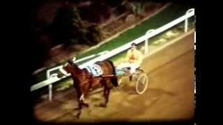 Harness Racing,Harold Park-05/11/1976 (Valiant Girl-B.P.Hancock)