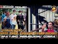 Kawal Ketat Kacer  Cobra  Hasil Akhir Di Luar Dugaan  Mp3 - Mp4 Download