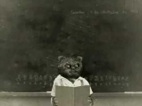 bruno-aleixo-na-escola-01--a-escola