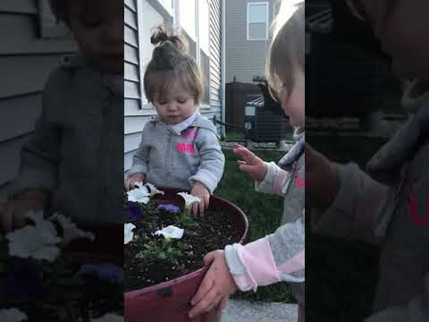 Eating potting soil is real