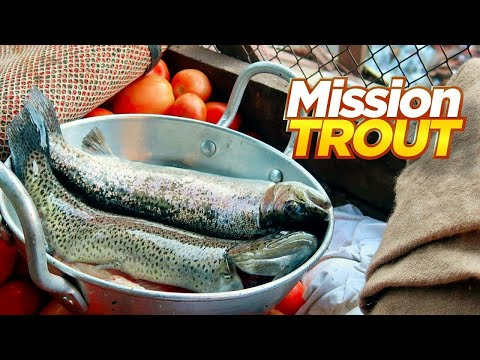Most Expensive Trout Fish In Pakistan, Rs.2500/KG | Live Cooking At Waterfall | Pakistan Street Food