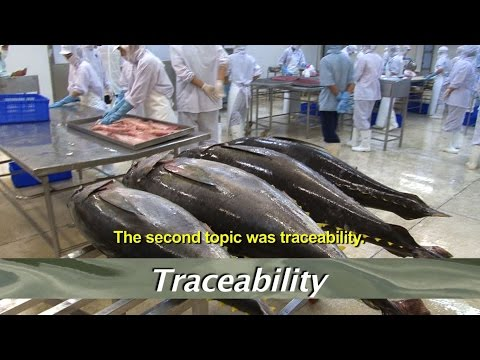Vietnam Tuna - Fishery Improvement Project