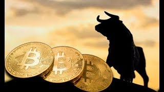 Bitcoin Bull Run Next Week, Bakkt Cash, Bitcoin Options, BTC Cash Back & Tezos Support