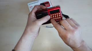 Посылка с Алиэкспресс#Цифровой радиоприёмник#FM USB TF MP3 плеер перезаряжаемая колонка